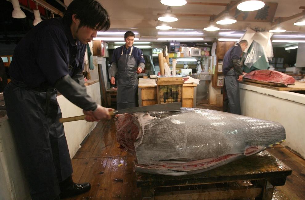 10. TOKIO - TARG RYBNY TSUKIJI: Pracownik rozcina oczyszczony korpus ryby. (Foto: Koichi Kamoshida/Getty Images)