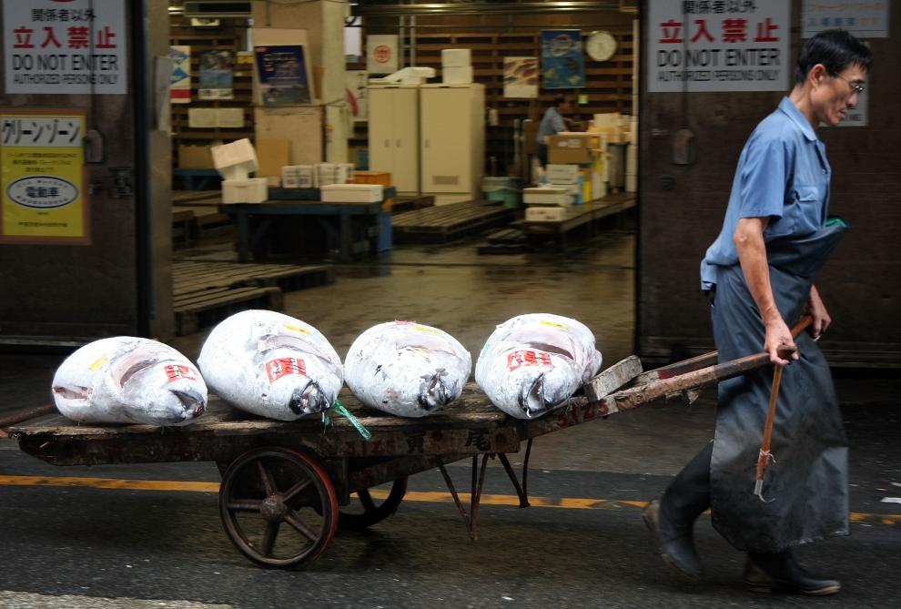 5. TOKIO - TARG RYBNY TSUKIJI: Jeden z hurtowników sprzedających towary na aukcji przewozi swój towar z magazynu. (Foto: Koichi Kamoshida/Getty Images)