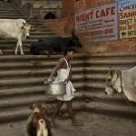 Waranasi – święte miasto