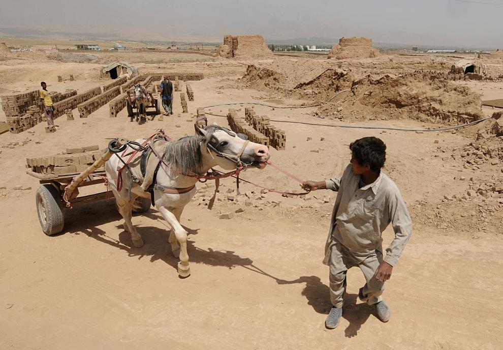 3. AFGANISTAN, Kabul: Transport cegieł na terenie fabryki. AFP PHOTO/SHAH Marai