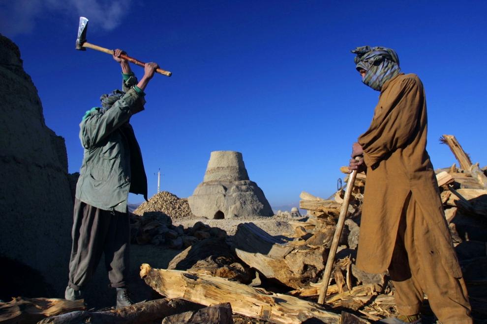 . AFGANISTAN, Kabul: Pracownicy rąbią drzewo używane do rozpalania pieców. (Foto: Paula Bronstein/Getty Images)