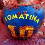 Tomatina – czerwona wojna