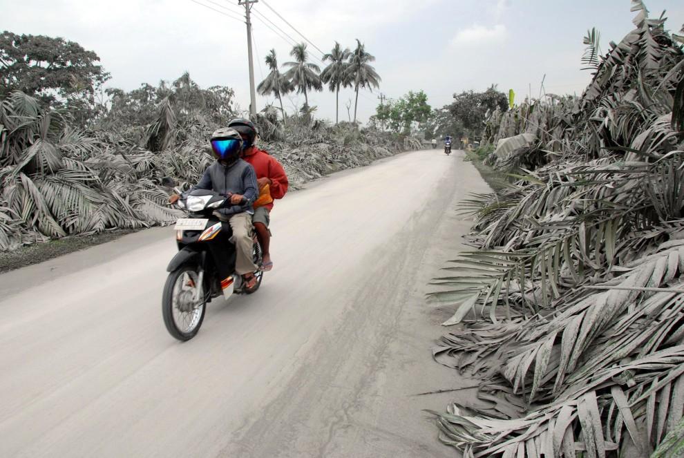 10. INDONEZJA, Sleman, 6 listopada 2010: Mężczyźni na motocyklu mijają wioskę pokrytą pyłem wulkanicznym. AFP PHOTO / CHIRIA HAKIM