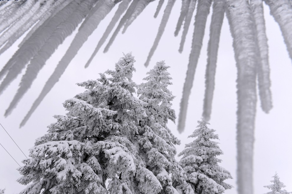 15. NIEMCY, Wasserkuppe, 26 listopada 2010: Ośnieżone drzewa i lodowe sople w jednym z centralnych miast Niemiec. AFP PHOTO / UWE ZUCCHI