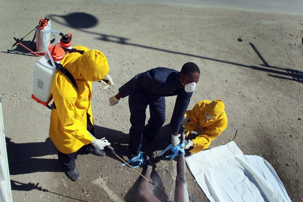 33. HAITI, Port-au-Prince, 17 listopada 2010: Ciało ofiary epidemii dezynfekowane przed wywiezieniem do masowego grobu. (Foto: Joe Raedle/Getty Images)