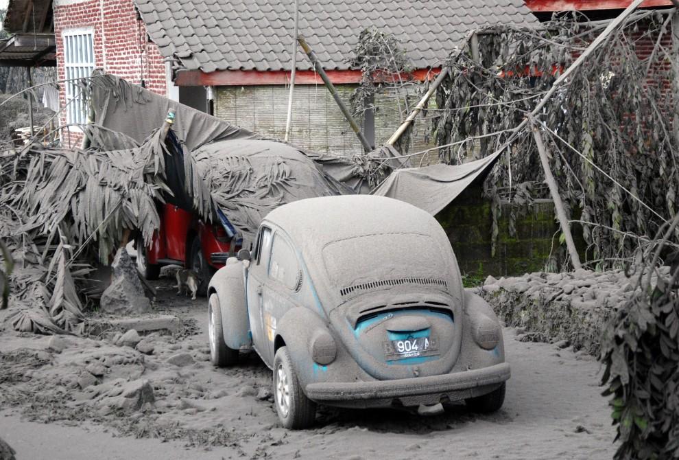 3. INDONEZJA, Mintilan, 5 listopada 2010: Jedno z gospodarstw w wiosce Mintilan przysypane pyłem wulkanicznym. AFP PHOTO / CHIRIA HAKIM