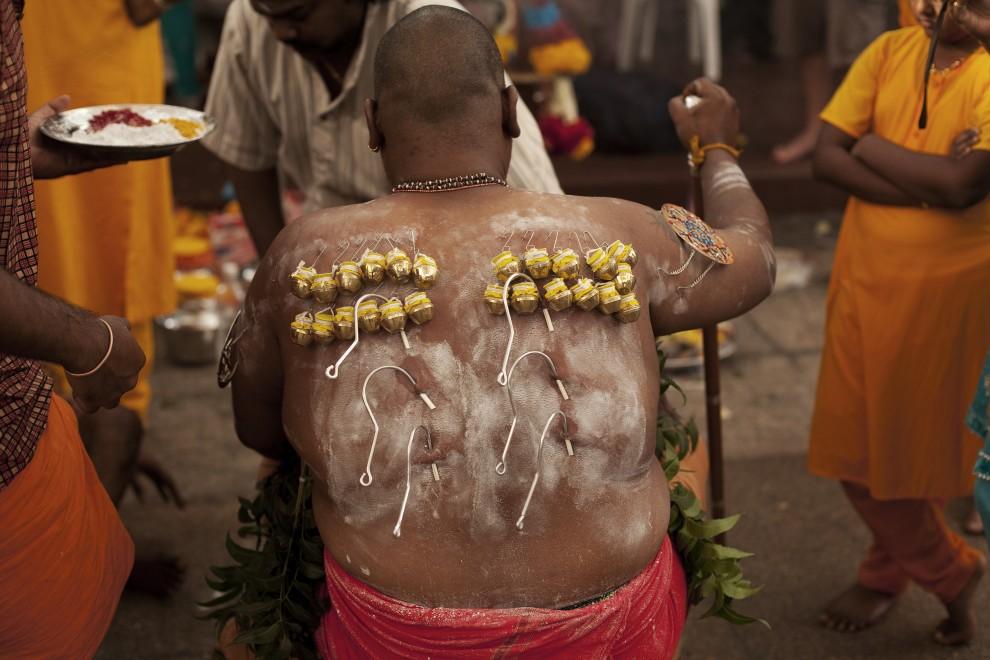 15. SINGAPUR, 20 stycznia 2011: Przekłute plecy mężczyzny uczestniczącego w obchodach święta Thaipusam. (Foto: Chris McGrath/Getty Images)