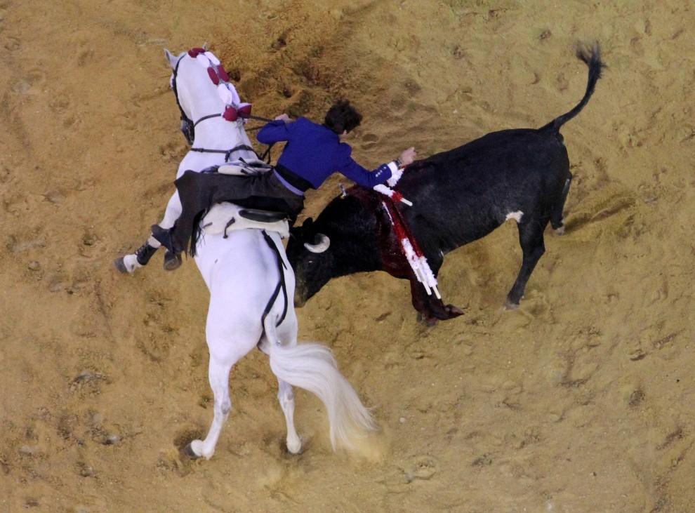 22. KOLUMBIA, BogotA, 23 stycznia 2011: Pablo Hermoso de Mendoza podczas walki z bykiem na arenie La Santamaria. AFP PHOTO / Felipe Caicedo