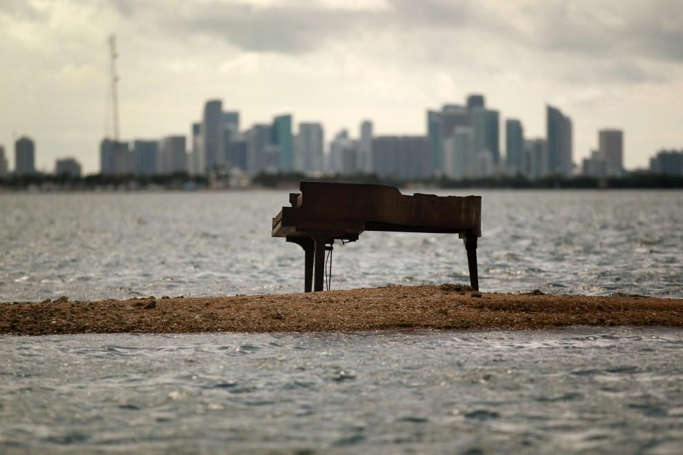 27. USA, Miami, 26 stycznia 2011: Pianino, które w nie do końca jasnych okolicznościach pojawiło się na wysepce w Biscayne Bay. (Foto: Joe Raedle/Getty Images)