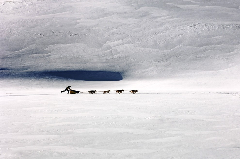 34. FRANCJA, Lanslevillard,  14 stycznia 2006: Maszer i jego zaprzęg na trasie wokół masywu Mont-Cenis. AFP PHOTO / JEAN-PHILIPPE KSIAZEK
