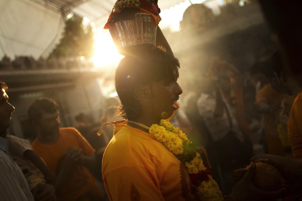 9. SINGAPUR, 20 stycznia 2011: Wierni przygotowują się do udziału w procesji. Devotees. (Foto: Chris McGrath/Getty Images)