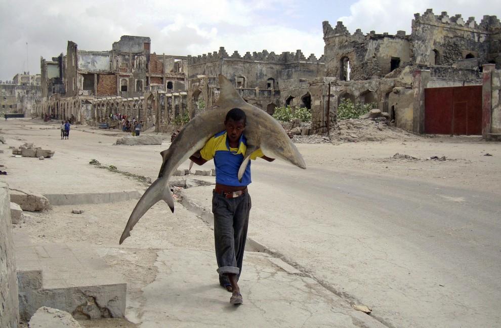"""16.SOMALIA, Mogadiszu, 23 września 2010: Omar Feisal zdobył pierwszą nagrodę World Press Photo w kategorii """"Życie codzienne - zdjęcie pojedyncze"""" za   fotografię przedstawiającą somalijskiego mężczyzny niosącego rekina. AFP PHOTO / REUTERS / OMAR FEISAL"""