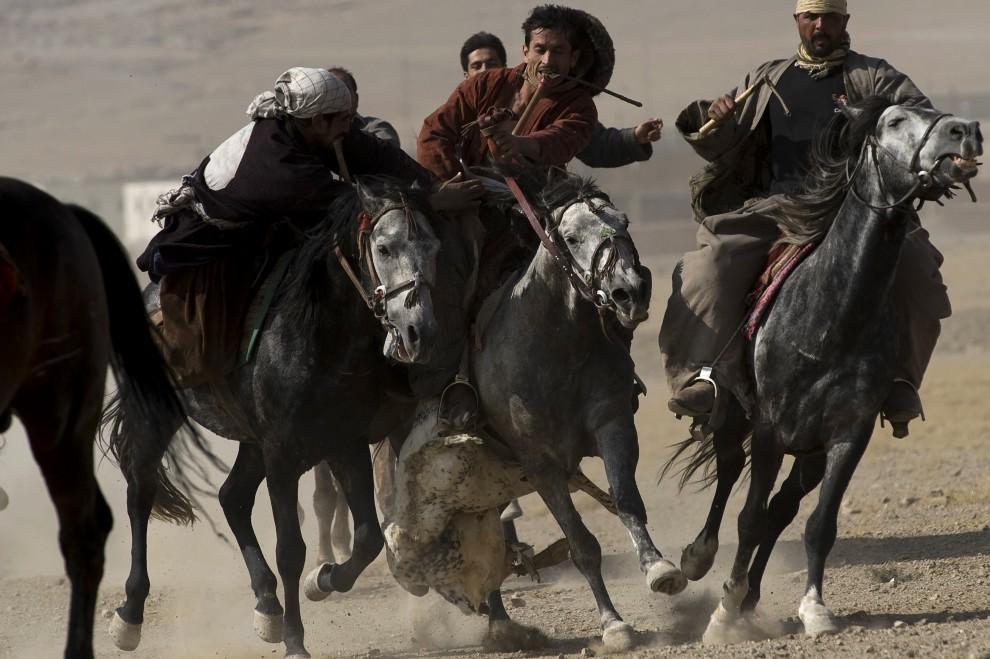 1. AFGANISTAN, Kabul, 6 listopada 2009: Jeźdźcy z dwu drużyn rywalizujący w buzkaszi. AFP PHOTO/ Nicolas ASFOURI 1. AFGANISTAN, Kabul, 6 listopada 2009: Jeźdźcy z dwu drużyn rywalizujący w buzkaszi. AFP PHOTO/ Nicolas ASFOURI