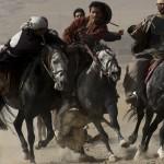 Afganistan – zwierzęta na arenie