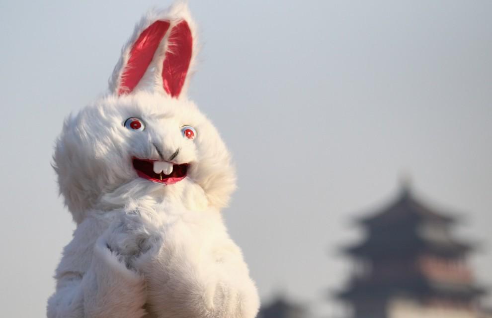 26. CHINY, Pekin, 2 lutego 2011: Mężczyzna w stroju królika cieszy się z nadejścia Nowego Roku. (Foto: Feng Li/Getty Images)