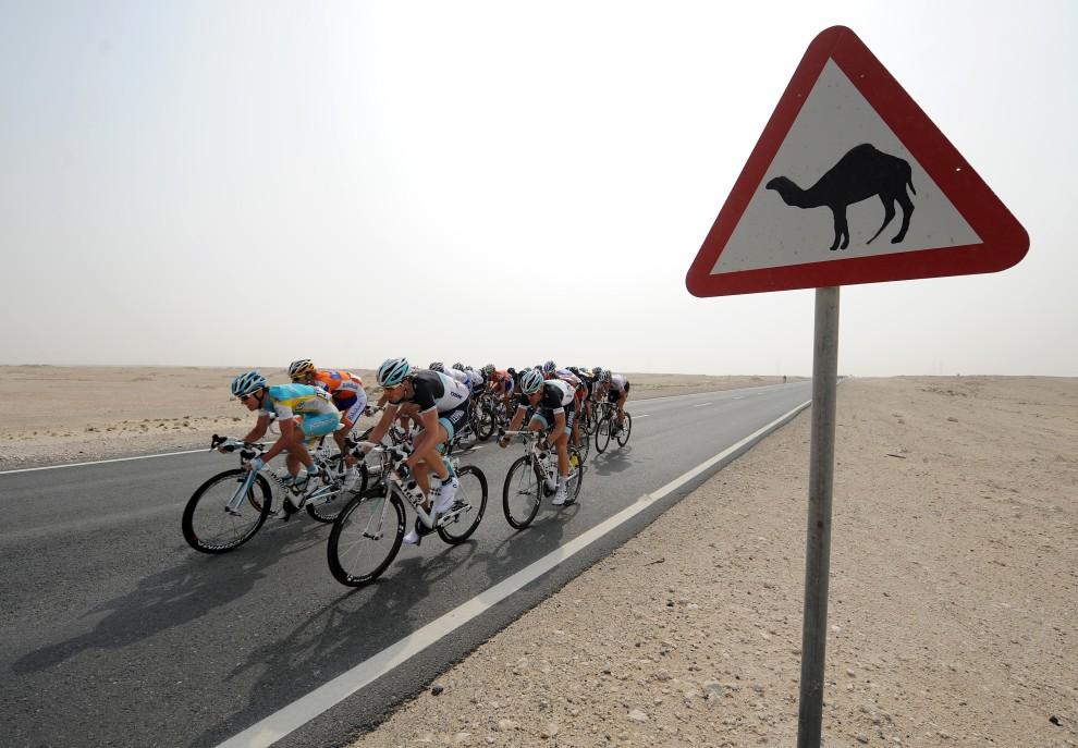 31. KATAR, Mesaieed, 9 lutego 2011: Kolarze ścigający się w Tour of Qatar. AFP PHOTO POOL / PASCAL GUYOT
