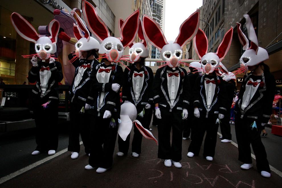32. AUSTRALIA, Sydney, 6 lutego 2011: Uczestniczki noworocznej zabawy w przebrane za króliki. (Foto: Lisa Maree Williams/Getty Images)