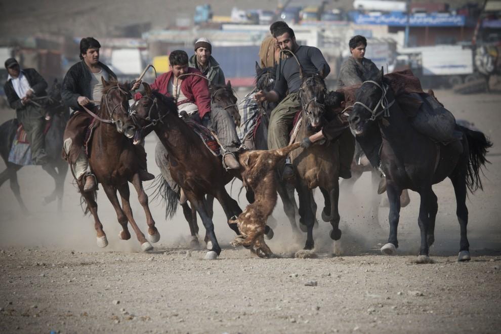5. AFGANISTAN, Kabul, 21 stycznia 2011: Jeden z zawodników stara się odebrać kozę zawodnikowi drużyny przeciwnej. (Foto:  Majid Saeedi/Getty Images)