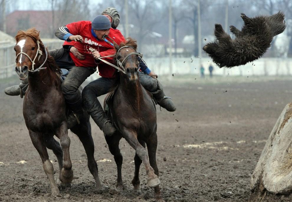 21. KIRGISTAN, Biszkek, 19 marca 2011: Zawodnicy buzkaszi, nazywanego tutaj kok-boru, rywalizują o skórę kozła. AFP PHOTO / VYACHESLAV OSELEDKO