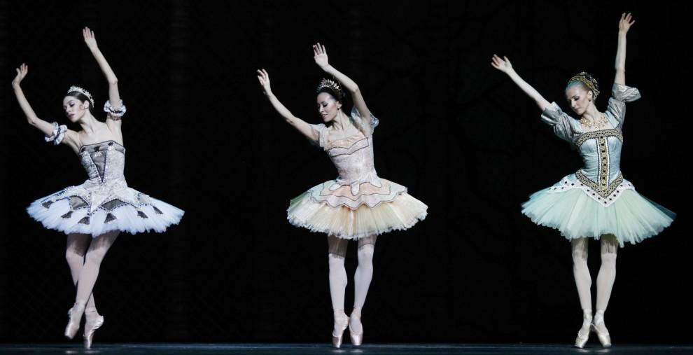 29. AUSTRIA, Wiedeń, 25 lutego 2011: Próba generalna baletu Don Kichot. AFP PHOTO / DIETER NAGL