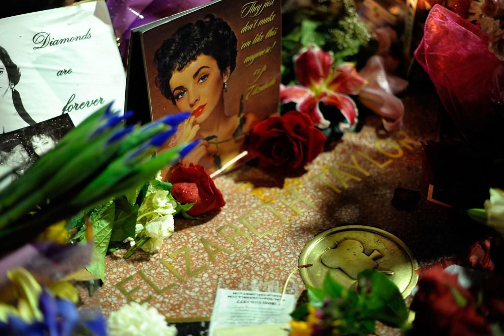 32. USA, Hollywood, 23 marca 2011: Kwiaty złożone na gwieździe zmarłej Elizabeth Taylor. (Foto: Charley Gallay/Getty Images)
