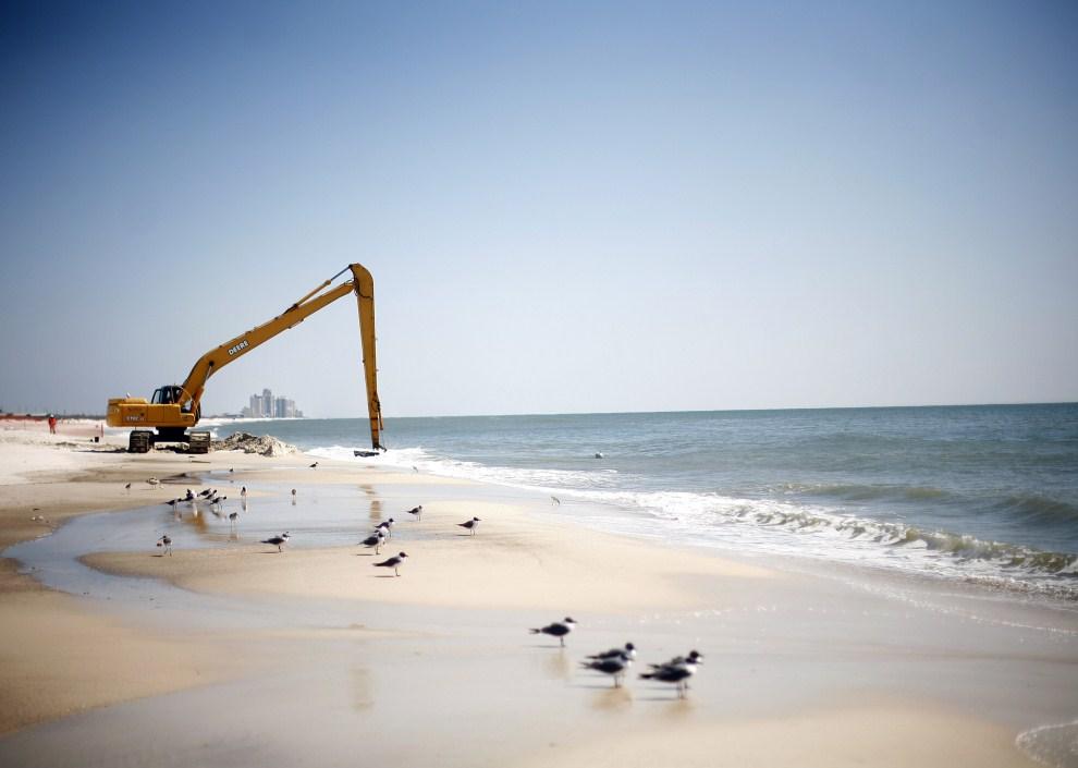 10. USA, Pensacola Beach, 9 marca 2011: Ciężki sprzęt używany do oczyszczania plaży z pozostałości po wycieku ropy. Eric Thayer/Getty Images/AFP