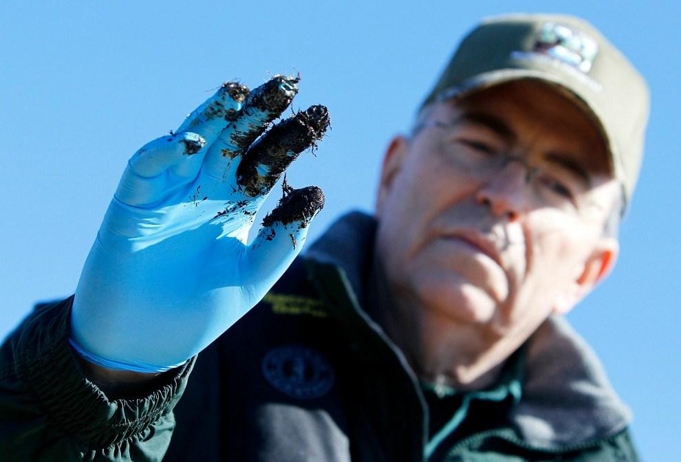 17. USA, Port Sulphur, 7 stycznia 2011: Robert Barham, pracownik Departamentu Środowiska Naturalnego i Rybołówstwa, pokazuje rękawicę zabrudzoną ropą unoszącą się wokół   Port Sulphur. Sean Gardner/Getty Images/AFP