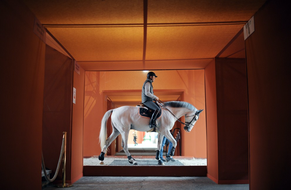 32. FRANCJA, Paryż, 14 kwietnia 2011: Koń przygotowywany do udziału w Międzynarodowych Zawodach w Skokach Przez Przeszkody. AFP PHOTO / FRANCK FIFE