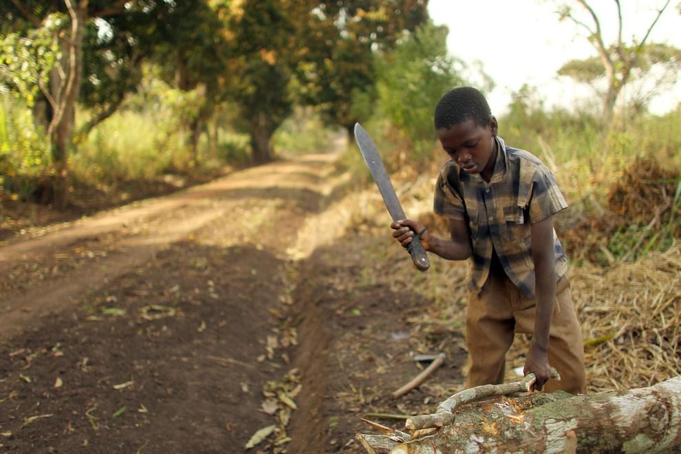 19. SUDAN, Jambio, 16 stycznia 2011: Chłopiec sprzedający drewno przy drodze do Jambio. (Foto: Spencer Platt/Getty Images)