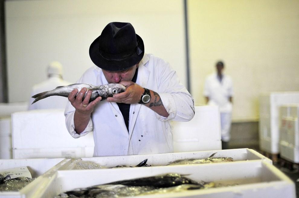 25. WIELKA BRYTANIA, Grimsby, 15 czerwca 2011: Kupujący sprawdza świeżość ryb na aukcji w Grimsby. (Foto: Bethany Clarke/Getty Images)