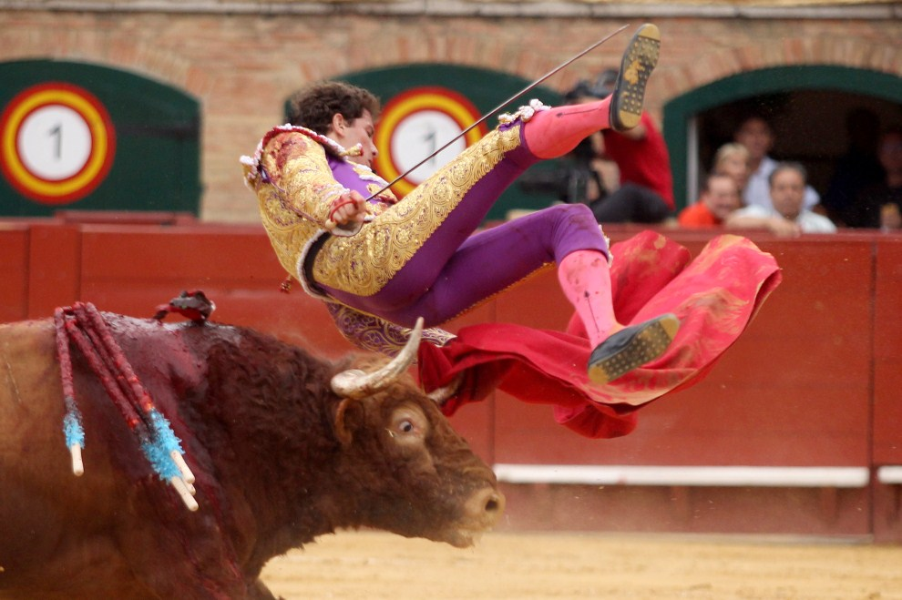 11. HISZPANIA, Walencja, 23 lipca 2011: Arturo Saldivar podrzucany przez byka podczas korridy. AFP PHOTO/ JOSE JORDAN