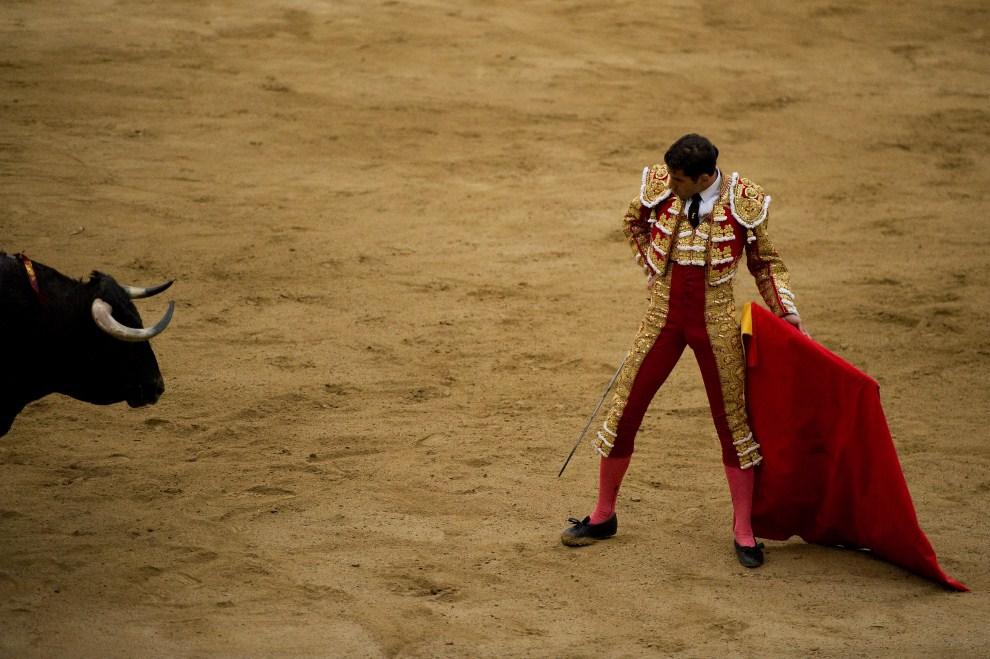 16. HISZPANIA, Barcelona, 17 lipca 2011: Serafin Marin walczy z bykiem na arenie w Barcelonie. (Foto:  David Ramos/Getty Images)