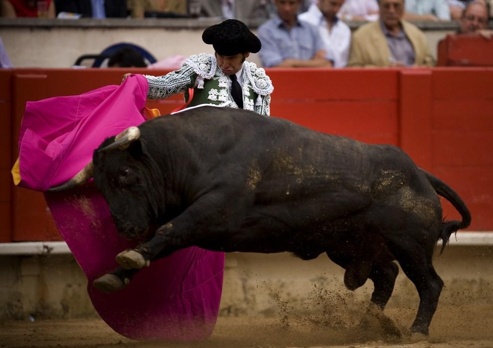 17. HISZPANIA, Barcelona, 17 lipca 2011: Pojedynek Morante de la Puebla z bykiem na arenie Monumental. (Foto:  David Ramos/Getty Images)
