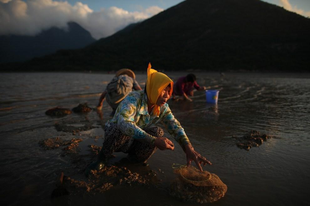 19. CHINY, Hongkong, 3 lipca 2011: Kobieta zbiera małże podczas odpływu. AFP PHOTO / ED JONES