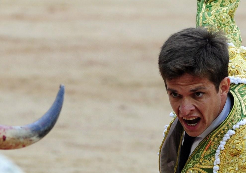 24. HISZPANIA, Pampeluna, 12 lipca 2011: Toreador El Juli stara się ominąć atakującego byka.. AFP PHOTO/ JAVIER SORIANO