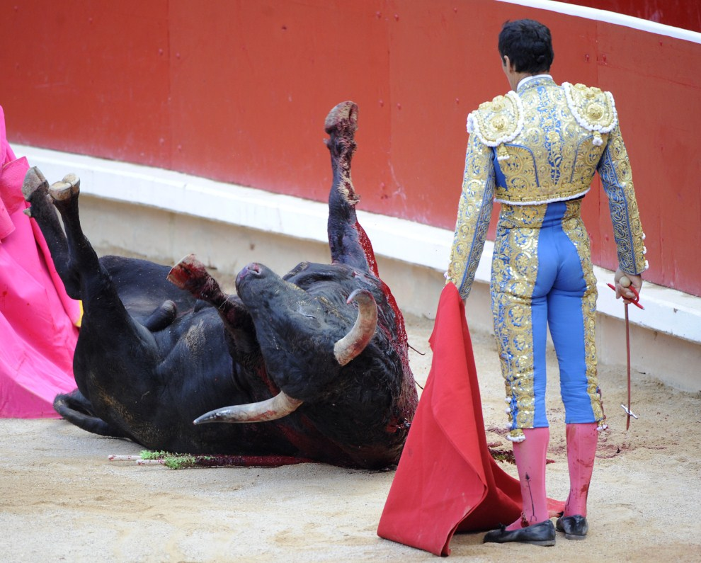 """26. HISZPANIA, Pampeluna, 13 lipca 2011: """"El Cid"""" przygląda się pokonanemu bykowi. AFP PHOTO / ANDER GILLENEA"""