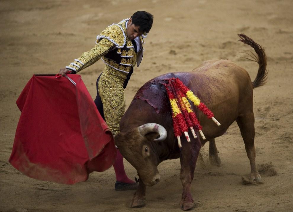 3. HISZPANIA, Barcelona, 26 czerwca 2011: Francisco Rivera Ordonez 'Paquirri' podczas pierwszej w tym sezonie walki. (Foto:  David Ramos/Getty Images)