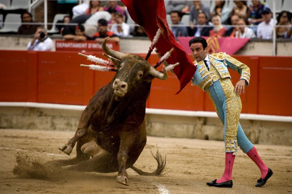 9. HISZPANIA, Barcelona, 17 lipca 2011: Enrique Ponce podczas walki z bykiem na arenie  Monumental. (Foto:  David Ramos/Getty Images)