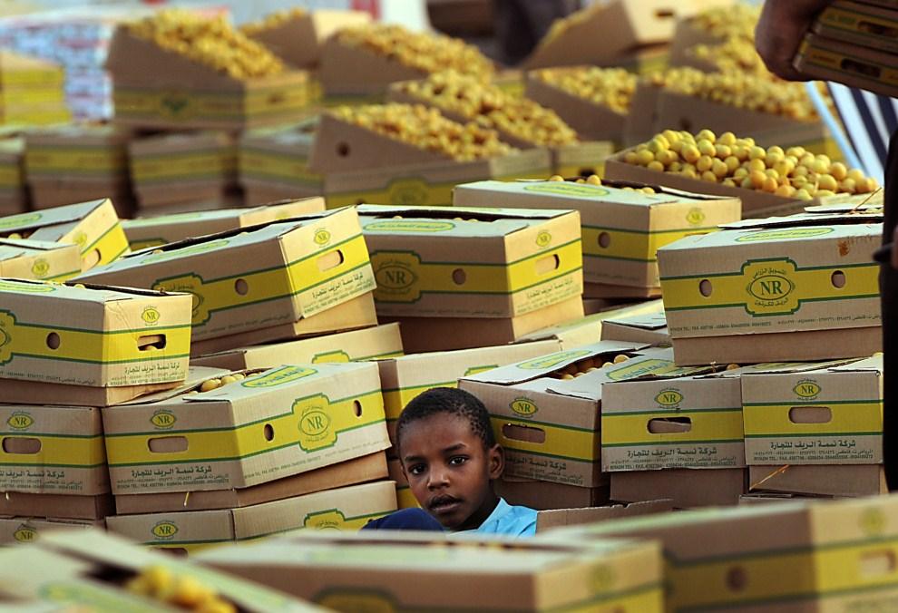 13. ARABIA SAUDYJSKA, Rijad, 31 lipca 2011: Chłopiec na straganie wśród pudeł z daktylami. AFP PHOTO/FAYEZ NURELDINE