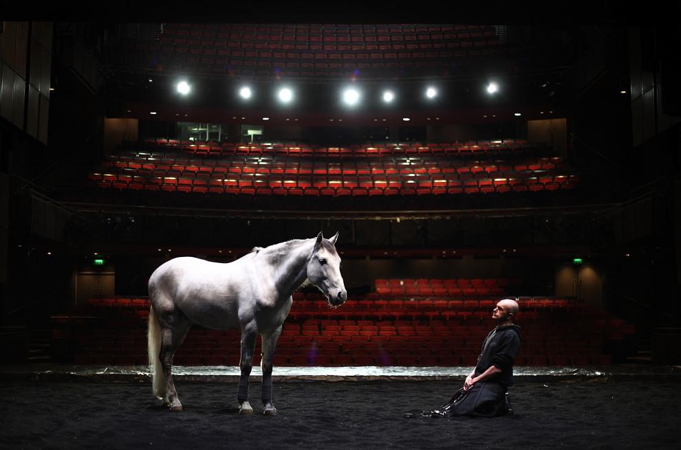 """32.WIELKA BRYTANIA, Londyn, 1 marca 2011: Przygotowania do wystawienia sztuki Ko Murobushiego """"The Centaur and the Animal). (Foto:  Peter Macdiarmid/Getty Images)"""