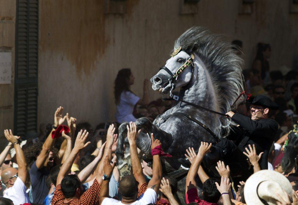 3.HISZPANIA, Ciutadella, 23 czerwca 2012: Wzburzony koń podczas parady ku czci św. Jana. AFP PHOTO/ Jaime REINA