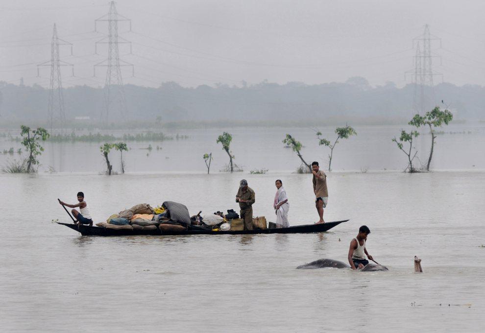 4.INDIE, Pobitora, 28 czerwca 2012: Ludzie wraz z dobytkiem na łodzi i mężczyzna na słoniu przemieszczają się na nie zalane tereny. AFP PHOTO/Biju BORO