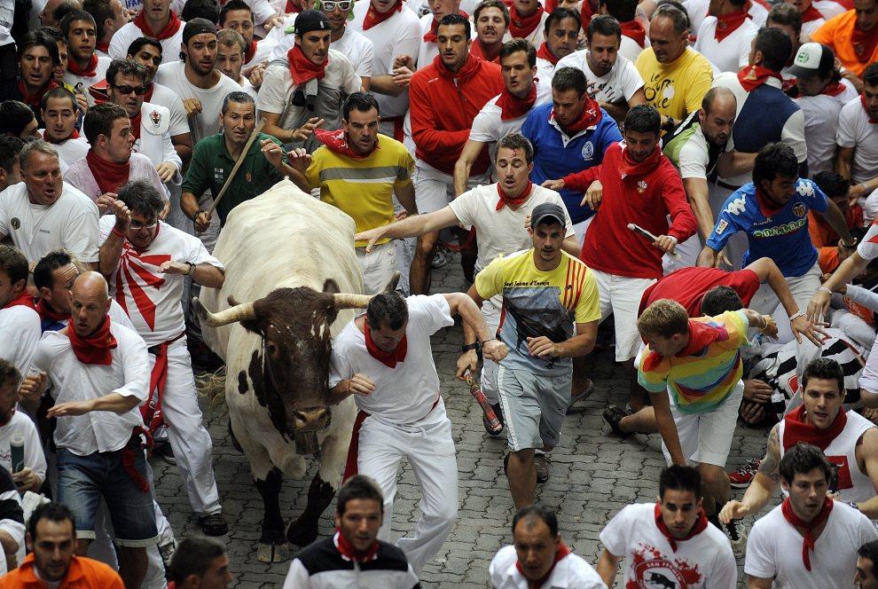 15.HISZPANIA, Pampeluna, 8 lipca 2012: Byk biegnący w tłumie uczestników zabawy. AFP PHOTO / Rafa Rivas
