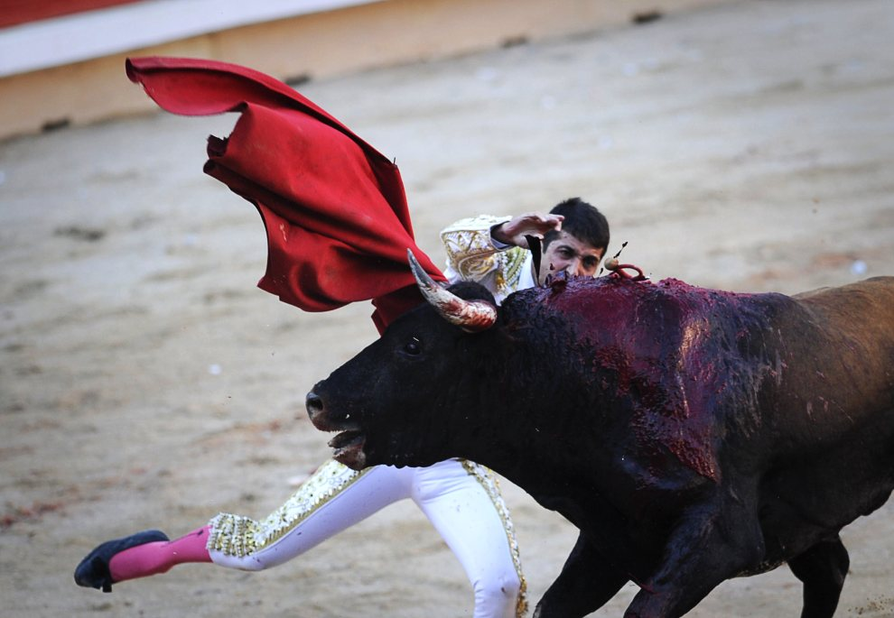 31.HISZPANIA, Pampeluna, 8 lipca 2012: Rafaelillo zadaje bykowi śmiertelną ranę. AFP PHOTO/Pedro ARMESTRE
