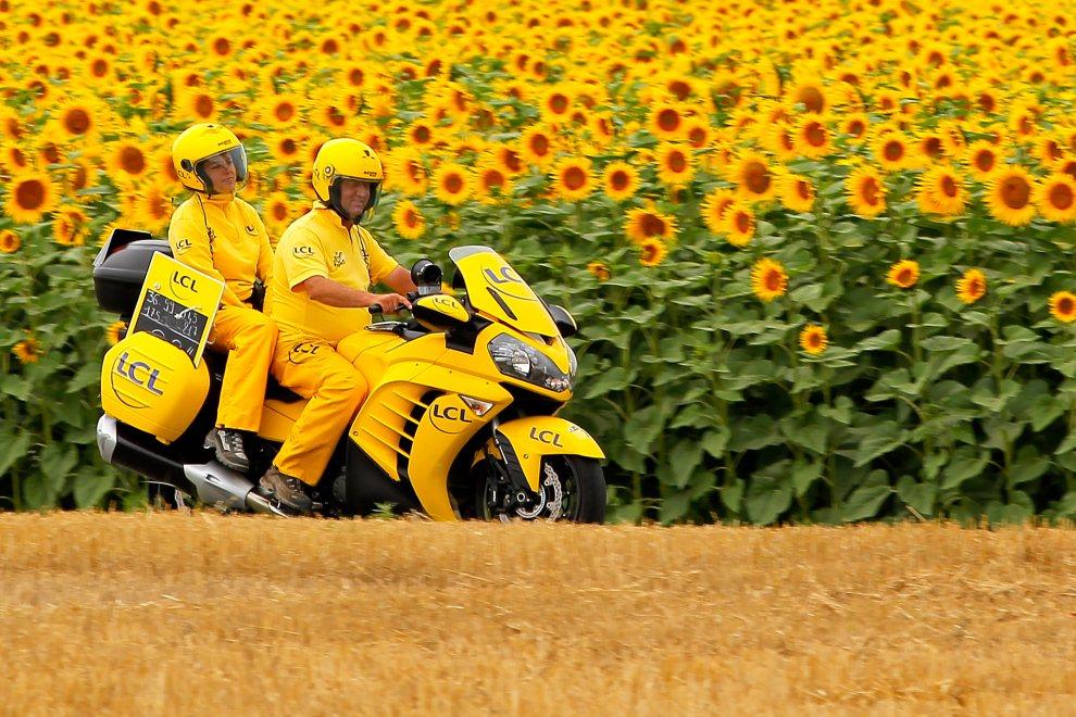 41.FRANCJA, Blagnac, 20 lipca 2012: Pojazd techniczny (przekazuje informacje o przewadze prowadzących nad peletonem) mija pole słoneczników. (Foto: Doug   Pensinger/Getty Images)