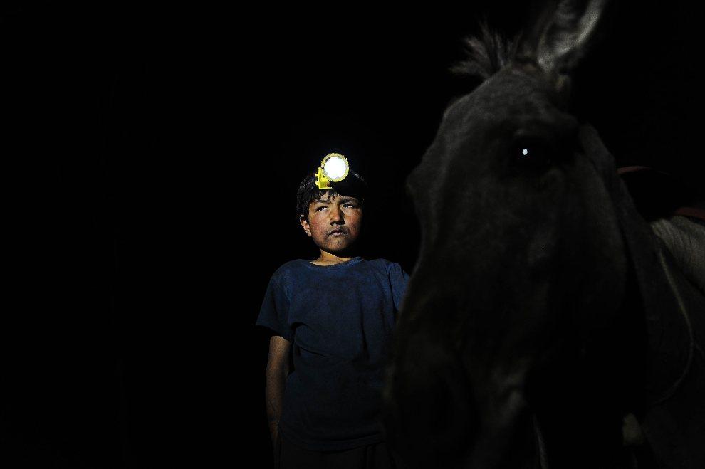 16.AFGANISTAN, Samangan, 7 sierpnia 2012: Górnik prowadzi osła ciągnącego wózek z węglem. AFP PHOTO/Qais Usyan
