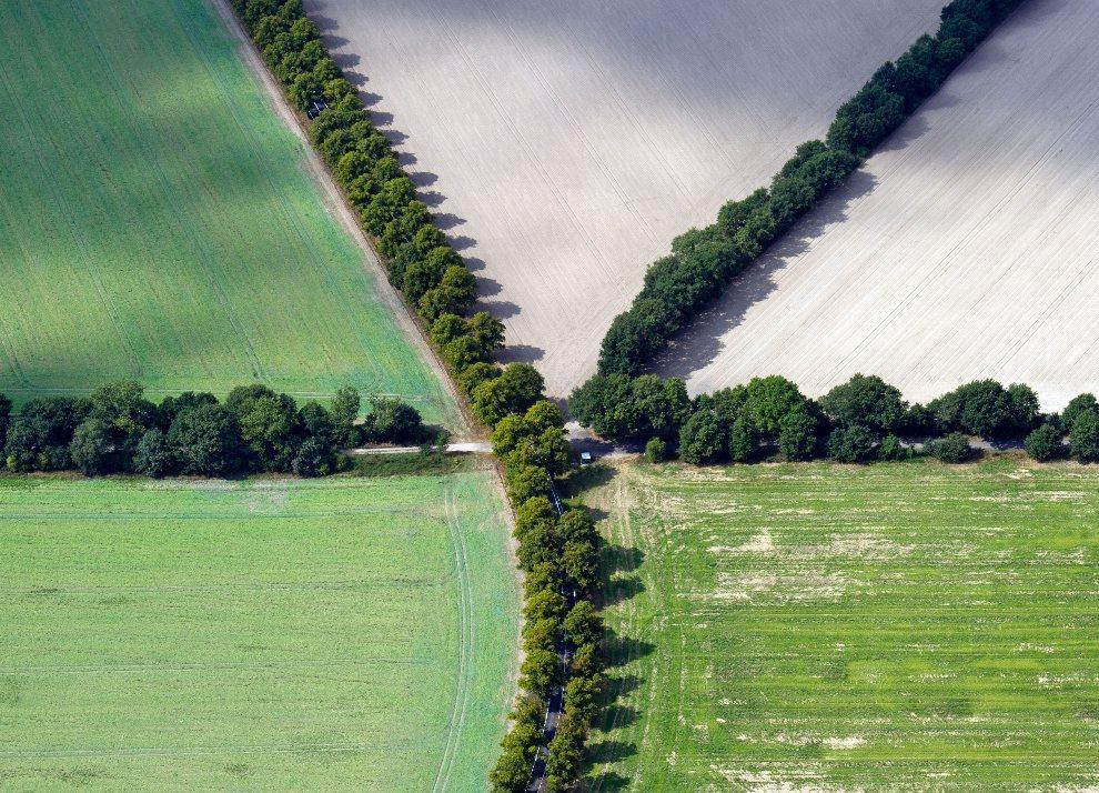 29.NIEMCY, Schönefeld, 4 września 2012: Malownicze alejki obsadzone drzewami na przedmieściach Schönefeld. AFP PHOTO / PATRICK PLEUL