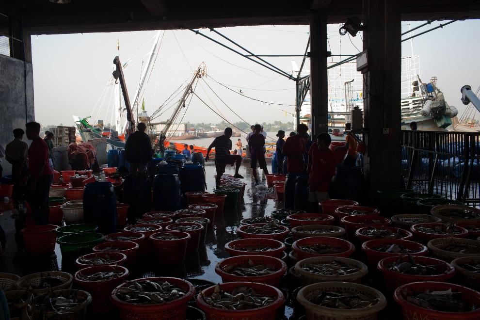 14.MJANMA, Rangun, 9 grudnia 2010: Wnętrze jednej z hal targu rybnego. (Foto:  Drn/Getty Images)