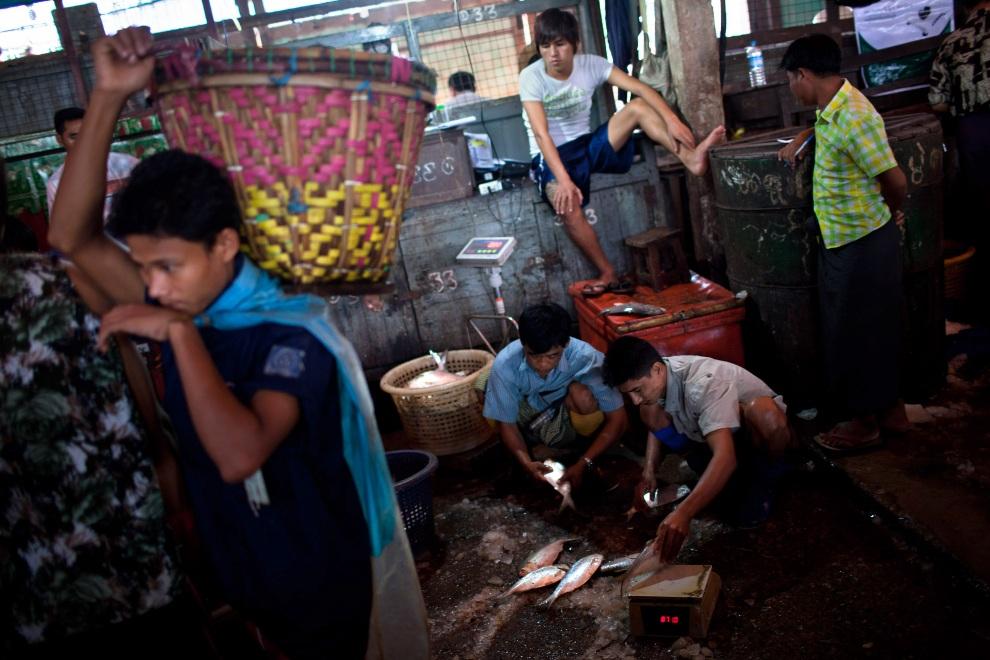 16.MJANMA, Rangun, 9 grudnia 2010: Handlarze ryb na targu San Pya. (Foto:  Drn/Getty Images)