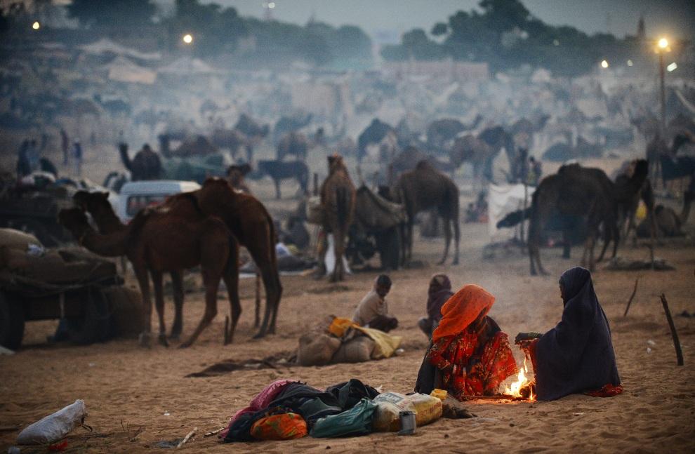 13.INDIEA, Puszkar, 21 listopada 2012: Kobiety grzejące się przy ognisku na targu wielbłądów. AFP PHOTO/Roberto Schmidt